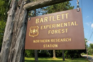 Bartlett Experimental Forest