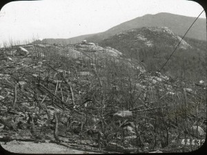 A clear cut and eroded mountainside