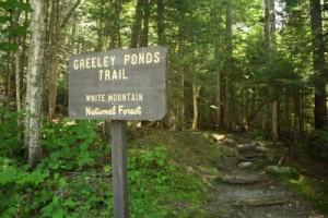 Greeley Ponds Trail Head