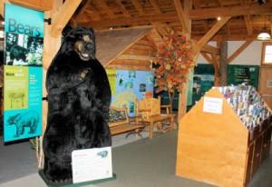 White Mountains Visitors Center.