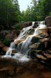 Zealand Falls